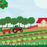Αγροτικό τοπίο - τρακτέρ και οπωρώνας απεικόνιση αποθεμάτων