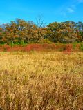 Αγροτικό τοπίο φθινοπώρου του Ουισκόνσιν Στοκ φωτογραφία με δικαίωμα ελεύθερης χρήσης