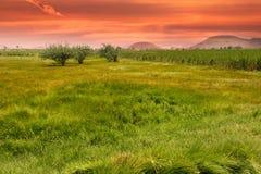 αγροτικό τοπίο φυσικό Στοκ εικόνες με δικαίωμα ελεύθερης χρήσης