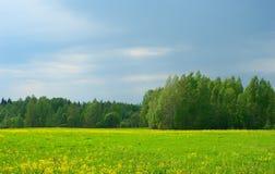 Αγροτικό τοπίο Στοκ Εικόνες