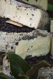 Αγροτικό τυρί Στοκ φωτογραφία με δικαίωμα ελεύθερης χρήσης