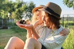Αγροτικό ύφος χώρας, ευτυχείς mom και κόρη μαζί με τα νεογέννητα κοτόπουλα μωρών στοκ φωτογραφία με δικαίωμα ελεύθερης χρήσης