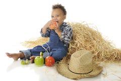 Αγροτικό Apple-Munching αγόρι Στοκ Εικόνα