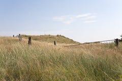 Αγροτικό Idyll το καλοκαίρι Στοκ Φωτογραφία