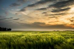 Αγροτικό landsape με το όμορφο ηλιοβασίλεμα - Σαξωνία, Γερμανία Στοκ εικόνα με δικαίωμα ελεύθερης χρήσης