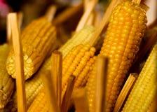 αγρο γλυκό επεξεργασίας βιομηχανίας καλαμποκιού Στοκ εικόνες με δικαίωμα ελεύθερης χρήσης