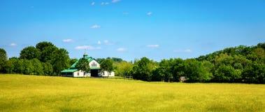Αγρόκτημα αλόγων Στοκ φωτογραφία με δικαίωμα ελεύθερης χρήσης