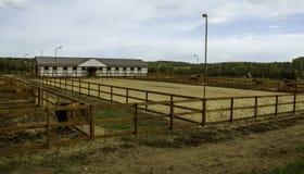 Αγρόκτημα αλόγων στοκ φωτογραφίες