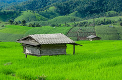 Αγρόκτημα βουνών Στοκ φωτογραφία με δικαίωμα ελεύθερης χρήσης
