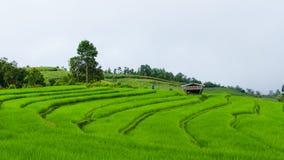Αγρόκτημα βουνών Στοκ Εικόνες