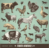 αγρόκτημα ζώων Στοκ Εικόνα