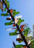 Αγρόκτημα Καλιφόρνια δέντρων μπουκαλιών Elmers Στοκ φωτογραφία με δικαίωμα ελεύθερης χρήσης