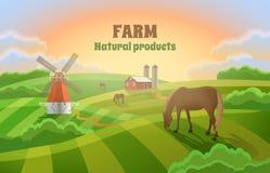 Αγρόκτημα με τους πράσινους τομείς μύλος τοπίων αγροτικός Στοκ Εικόνα