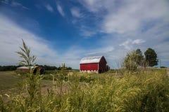 Αγρόκτημα με το μπλε ουρανό Στοκ φωτογραφία με δικαίωμα ελεύθερης χρήσης