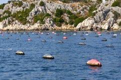 Αγρόκτημα μυδιών θάλασσας Στοκ φωτογραφία με δικαίωμα ελεύθερης χρήσης