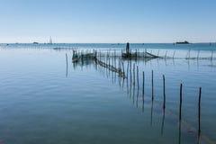 Αγρόκτημα μυδιών στην ενετική λιμνοθάλασσα Στοκ Φωτογραφίες