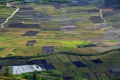 αγρόκτημα παραδοσιακό Στοκ Εικόνες