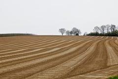 Αγρόκτημα που καλλιεργεί νωρίς την άνοιξη Στοκ Εικόνες