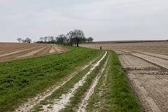 Αγρόκτημα που καλλιεργεί νωρίς την άνοιξη Στοκ Φωτογραφίες