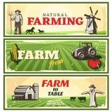 Αγρόκτημα στα εμβλήματα επιτραπέζιας έννοιας καθορισμένα απεικόνιση αποθεμάτων
