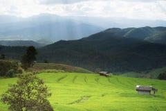 Αγρόκτημα Ταϊλανδού Στοκ φωτογραφία με δικαίωμα ελεύθερης χρήσης