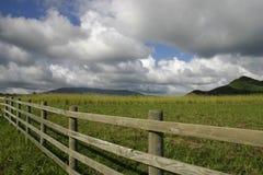 αγρόκτημα της Χαβάης Στοκ Εικόνα