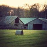 Αγρόκτημα του Wisconsin Στοκ Εικόνα