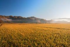 Αγρόκτημα Στοκ Εικόνα
