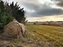 Αγρόκτημα Στοκ φωτογραφία με δικαίωμα ελεύθερης χρήσης