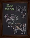Αγρόκτημα Eco με το κοτόπουλο, αγελάδα, χοίρος Στοκ Εικόνες