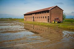 Αγρόκτημα Vercelli, Ιταλία Στοκ φωτογραφία με δικαίωμα ελεύθερης χρήσης