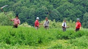 Αγρότες με τα δρεπάνια στοκ εικόνες