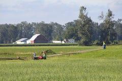 Αγρότες που κατασκευάζουν το σύστημα άρδευσης στοκ φωτογραφίες