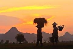 αγρότες Ταϊλανδός Στοκ φωτογραφίες με δικαίωμα ελεύθερης χρήσης