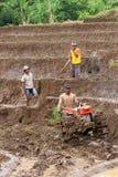 αγρότες Στοκ Φωτογραφία