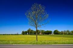 αγρότης επαρχίας Στοκ φωτογραφίες με δικαίωμα ελεύθερης χρήσης