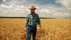 0 αγρότης στη φυτεία σιταριού που ρίχνει το καπέλο του απόθεμα βίντεο