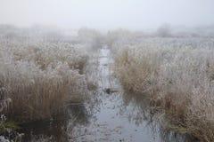 Αγωγός τομέων στην περιοχή του Pskov παγετού Οκτωβρίου πρωινού, της Ρωσίας Στοκ Εικόνα