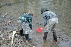 αγόρια που πιάνουν το ρεύμα βατράχων στοκ εικόνα