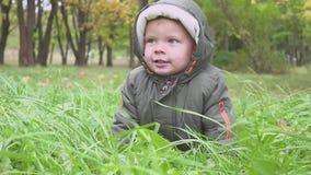 Αγόρι δύο ετών παιδιών που τρέχει στο δάσος φθινοπώρου, πάρκο απόθεμα βίντεο
