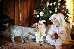 Αγόρι και ένα χριστουγεννιάτικο δέντρο στοκ εικόνες