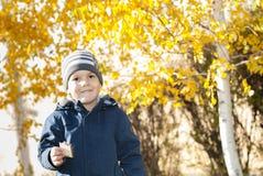 Αγόρι κοντά στη σημύδα Στοκ Εικόνα