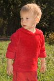 αγόρι λίγο πάρκο Στοκ φωτογραφία με δικαίωμα ελεύθερης χρήσης