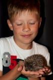 Αγόρι με έναν σκαντζόχοιρο σε ετοιμότητα Στοκ Φωτογραφία