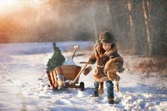 Αγόρι με ένα χριστουγεννιάτικο δέντρο στο χειμερινό δάσος στοκ φωτογραφία με δικαίωμα ελεύθερης χρήσης