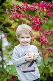 Αγόρι με το μπέιζ-μπώλ Στοκ Εικόνες