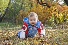 αγόρι μικρό Στοκ εικόνα με δικαίωμα ελεύθερης χρήσης