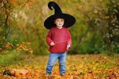 Αγόρι μικρών παιδιών στο δειγμένο παιχνίδι καπέλων με τη μαγική ράβδο υπαίθρια Στοκ Εικόνες