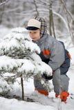 αγόρι που μυρίζει κομψό Στοκ φωτογραφία με δικαίωμα ελεύθερης χρήσης
