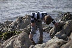 Αγόρι που παίζει και που εξερευνά στις παλιρροιακές λίμνες κοντά στον ωκεανό Στοκ εικόνες με δικαίωμα ελεύθερης χρήσης